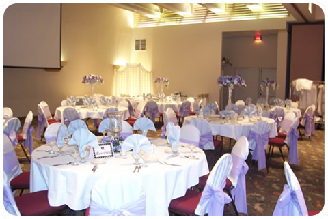 Chair Covers Rental Price 100 ea Without Sash Share